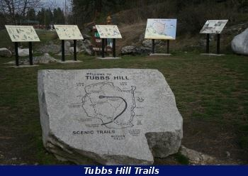 Tubbs Hill Rock
