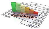 Chart of Accounts with bar graph